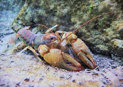 Crawdad Photograph - Wild Crawfish  by Kyle Findley