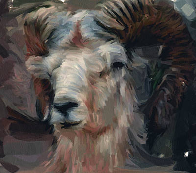 House Pet Digital Art - Wild Goat Portrait by Yury Malkov