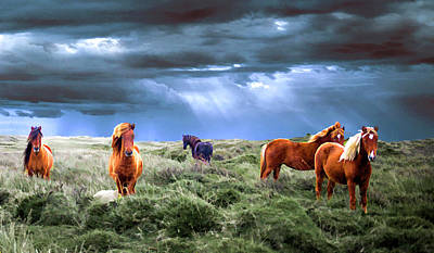 Menace Painting - Wild Horses Dark And Stormy Sky by Elaine Plesser