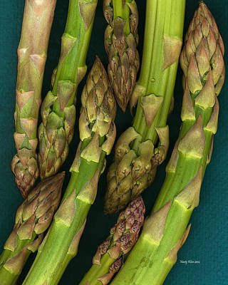 Asparagus Digital Art - Wild Tips by Marty Klein