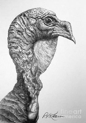 Wild Turkey Drawing - Wild Turkey by Roy Anthony Kaelin