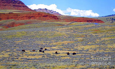 Thermopolis Photograph - Wild West by Regina Strehl