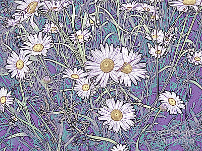 Flower Photograph - Wildflower Daisies In Field Of Purple And Teal by Conni Schaftenaar
