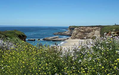 Panther Photograph - Wildflowers At Panther Beach - Santa Cruz - California by Brendan Reals