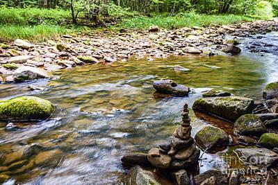 Williams River Zen Rocks Print by Thomas R Fletcher