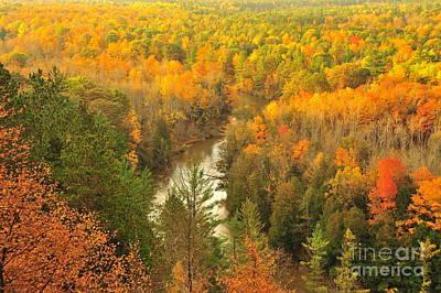 Winding Through Autumn Print by Terri Gostola