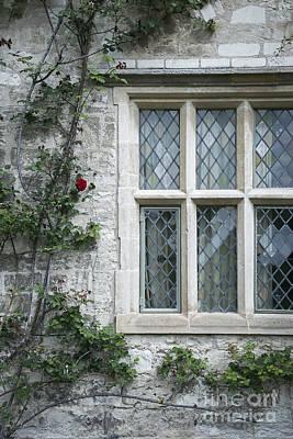 Window And Rose Print by Svetlana Sewell