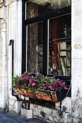 Window Flowers Print by John Rizzuto