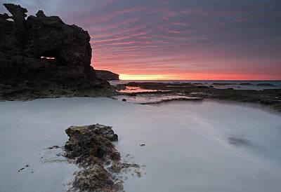 Kangaroo Photograph - Window On Dawn by Mike  Dawson