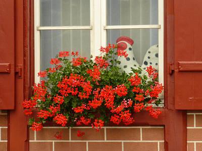 Window Watcher Print by Connie Handscomb