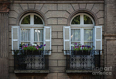 Flower Boxes Photograph - Windows In Toulouse by Elena Elisseeva