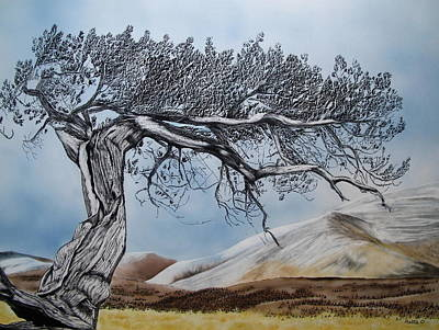 Scratchboard Painting - Windswept by Mattie O