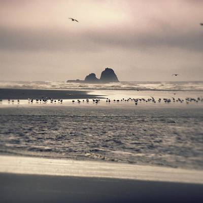 Photograph - Windy Balmy Day At The Beach by Tikvah's Hope