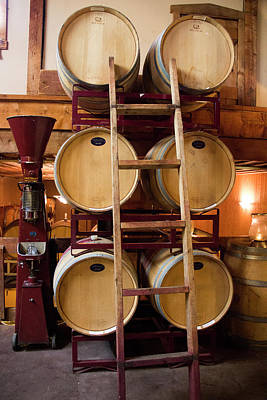 Winery Photograph - Wine Barrels by Brian Manfra