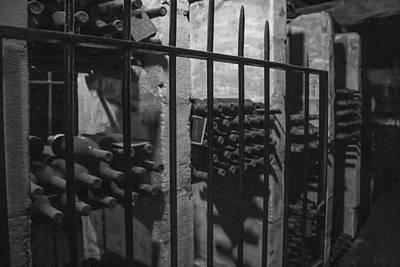 Wine Cellar Bottles Print by Georgia Fowler