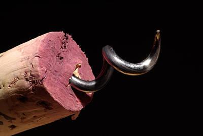 Grand Cru Photograph - Wine Cork And Cork Screw by Frank Tschakert