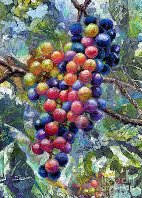 Wine Grapes Print by Hailey E Herrera