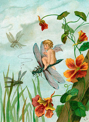 Baby Angel Drawing - Winged Fairy Riding A Dragonfly Near Nasturtium Flowers by Unknown