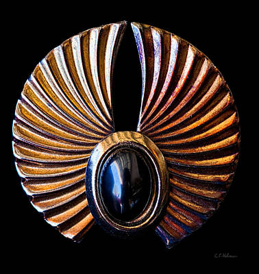Earrings Photograph - Wings by Christopher Holmes