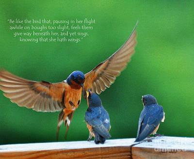 Baby Bird Digital Art - Wings by Diane E Berry