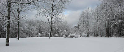 Landscape Photograph - Winter by Angela Wile