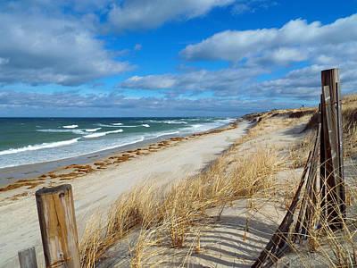 Winter Beach View Print by Dianne Cowen
