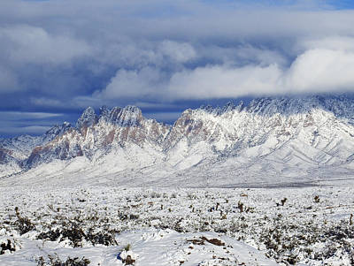 Las Cruces Digital Art - Winter Beauties Organ Mountains by Kurt Van Wagner