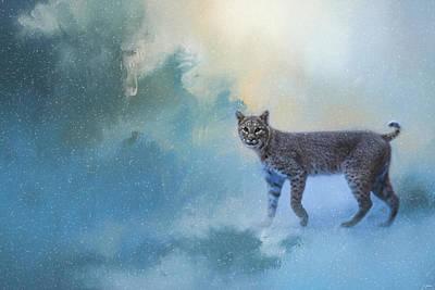 Winter Bobcat Print by Jai Johnson