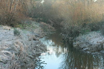 Photograph - Winter Creek by Terry Perham