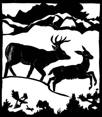 Magpies Drawing - Winter Deer Linoleum Demo For Students by Dawn Senior-Trask