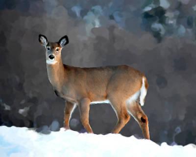 Winter Doe Print by Diane E Berry
