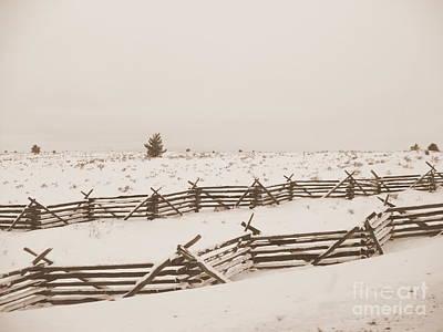 Winter Fence In Oregon Print by Carol Groenen