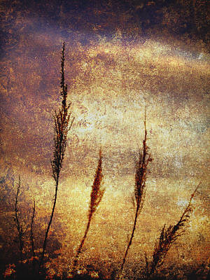 Winter Gold Print by Skip Nall