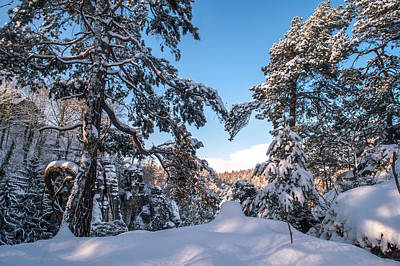 Winter Heart. Saxon Switzerland Print by Jenny Rainbow