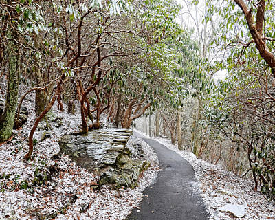 Winter Hiking Trail Print by Susan Leggett