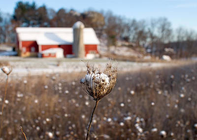 Red Barns Photograph - Winter Meadow by Todd Klassy