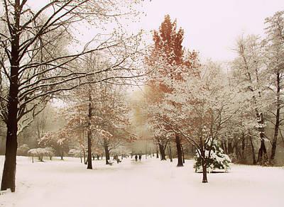 Snow Digital Art - Winter Park by Jessica Jenney
