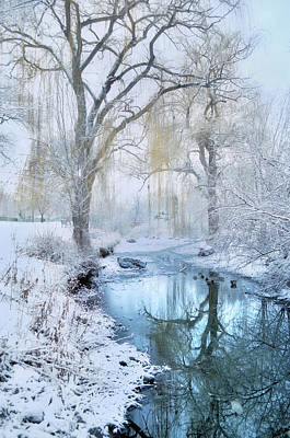 Winter Reflections In Blue Print by Tara Turner