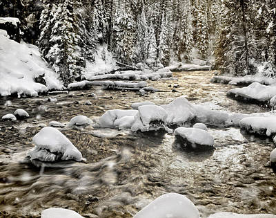 Buffalo Photograph - Winter River by Leland D Howard