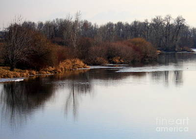 Winter Riverbank Print by Carol Groenen