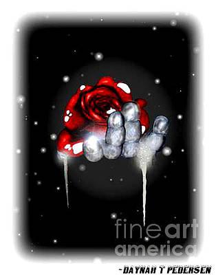 Rose Drawing - Winter Rose by Dana Pedersen