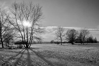 Winter Shadow Original by Terence Davis