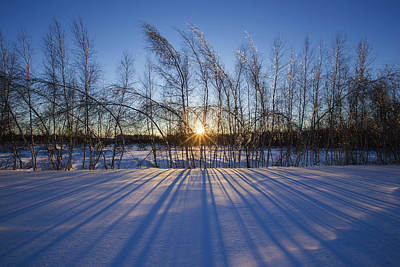 Laval Photograph - Winter Shadows by Mircea Costina Photography