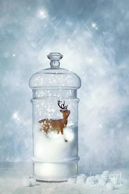 Winter Snow Globe Print by Amanda Elwell