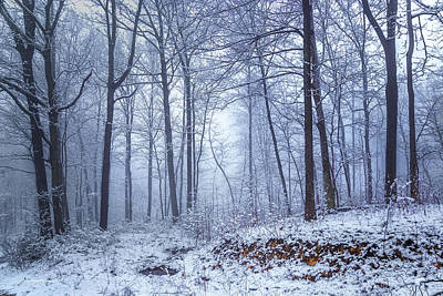 Winter Still Print by Ron Jones