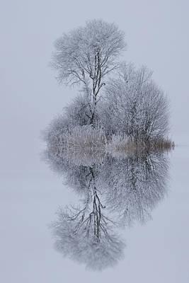 Winter Stillness Print by Norbert Maier