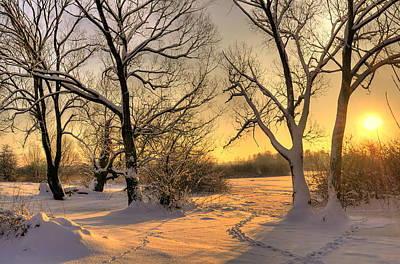 Winter Sunset Print by Jaroslaw Grudzinski