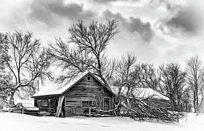 Winter Thoughts 2 - Bw Print by Steve Harrington