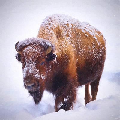 Buffalo Photograph - Winter Walk by Greg Norrell