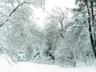 Winter-landscape Digital Art - Winter Whisper by Jessica Jenney
